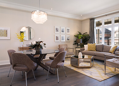 Luxury New Home Living Rooms