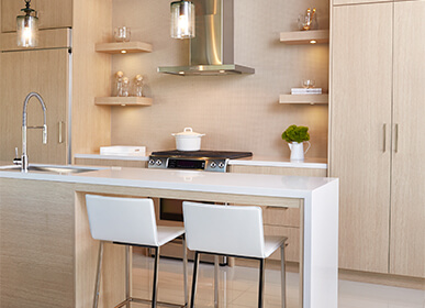 Modern Townhome Kitchen in Toronto